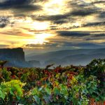 20 Photos That Will Make You Want to Visit La Rioja, Spain