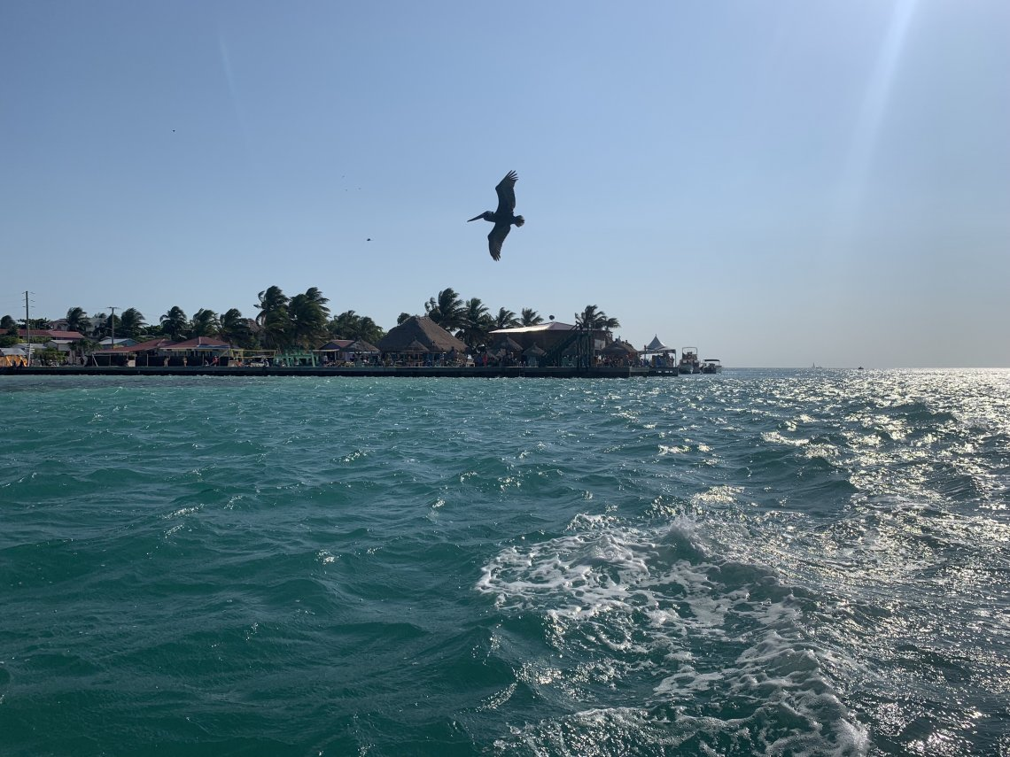 The Split Caye Caulker