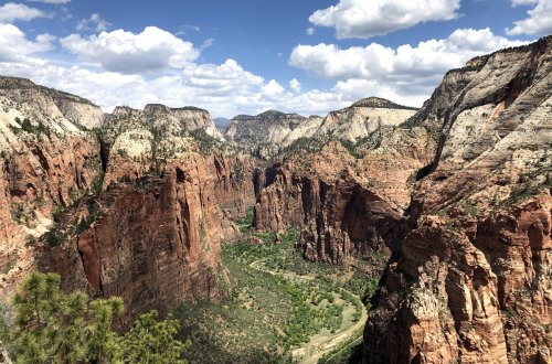 Guide to Hiking Angels Landing Zion