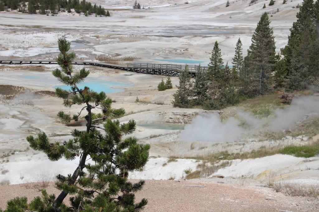 Norris geyser basin Yellowstone itinerary