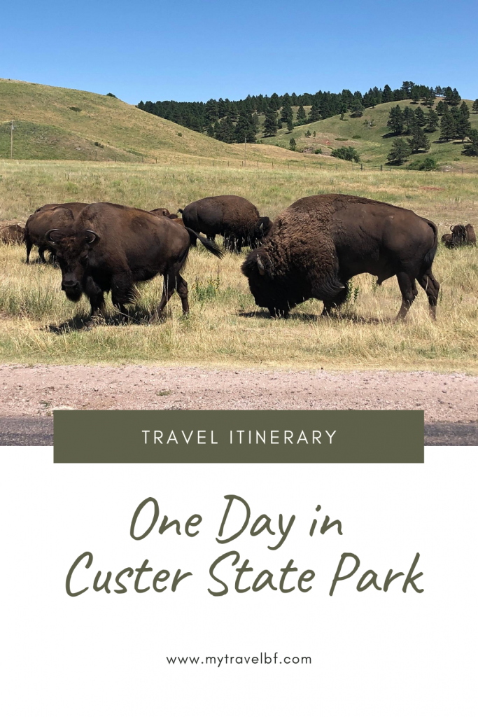 One Day in Custer State Park