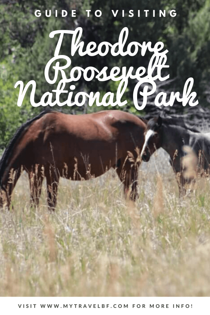 Visiting Guide Theodore Roosevelt National Park