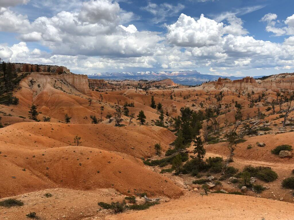 bryce canyon 1 day