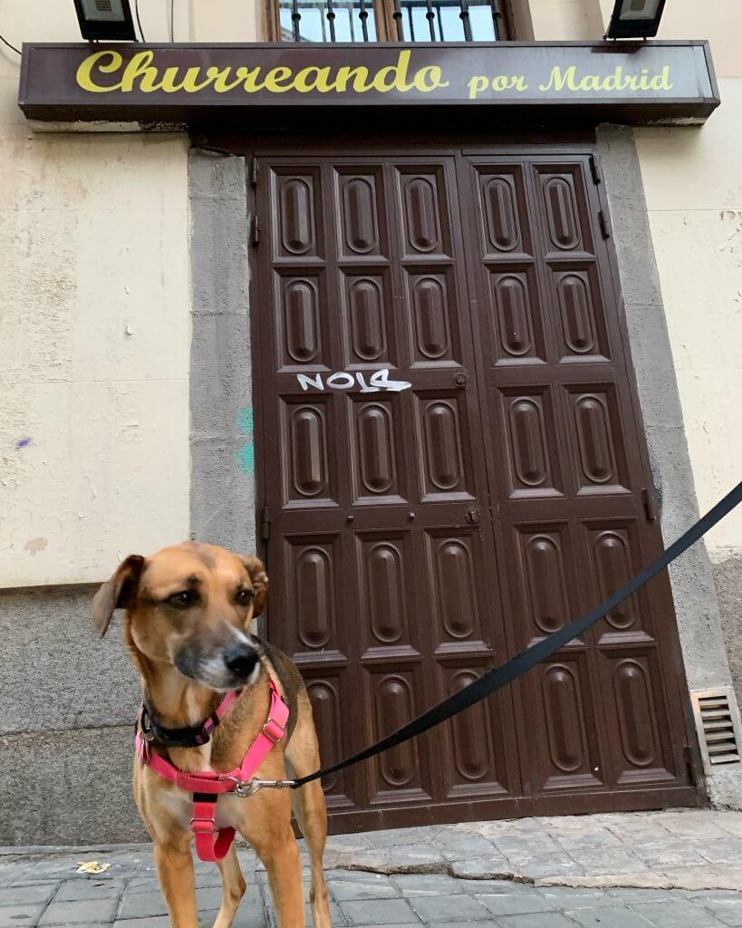Churro in Madrid